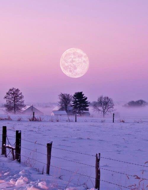 Luna de la Nieve