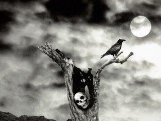 Luna de la Muerte